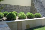1-giardino-senza-prato-img-5