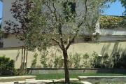 1-giardino-senza-prato-img-6