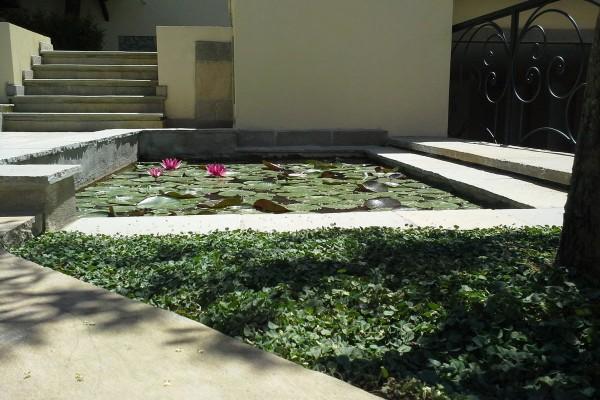 1-giardino-senza-prato-img-7